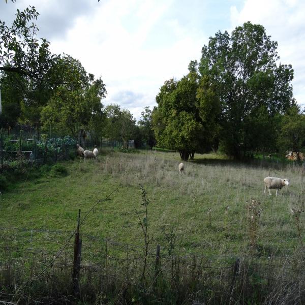 Offres de vente Terrain Flavigny-sur-Moselle 54630